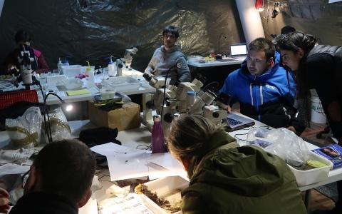 Premier soir de travail au laboratoire, installé à la plateforme Stella Mare (UMS 3514 Université de Corse/CNRS)