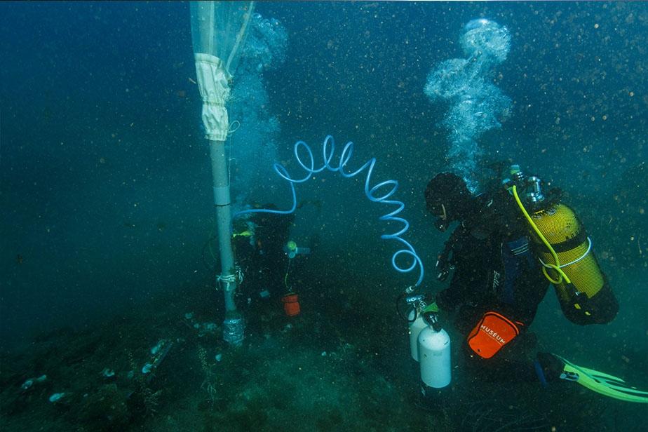Collecte en plongée avec un aspirateur sous-marin © J. Utge / MNHN