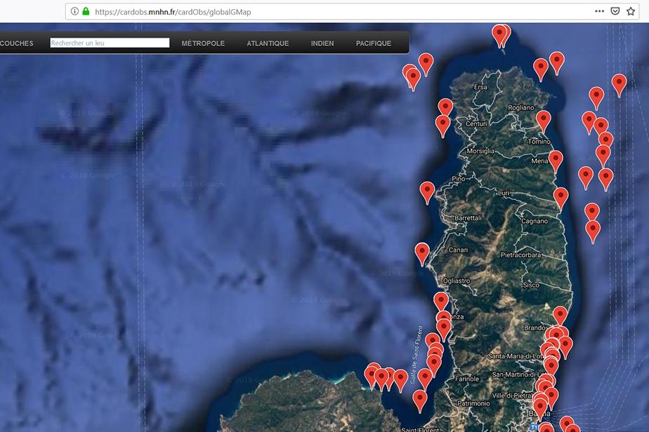 Stations échantillonnées dans le Parc naturel marin du cap Corse et de l'Agriate