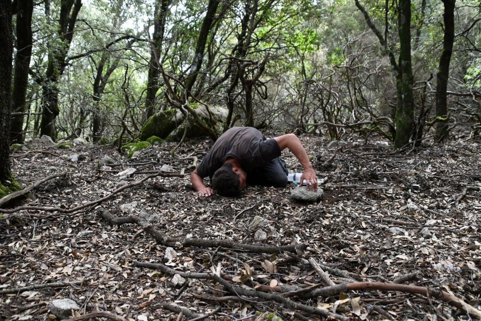De l'art de bien positionner un piège Barber, gobelet dans le sol recouvert d'une pierre  © MNHN - J. Touroult