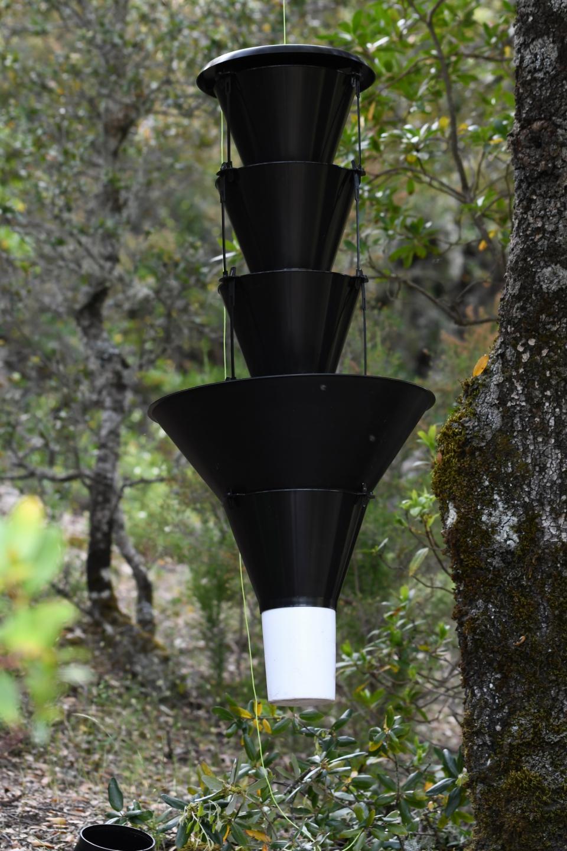 Piège Lindgren funnel trap. Ce piège mime une forme de tronc d'arbre © MNHN - J. Touroult