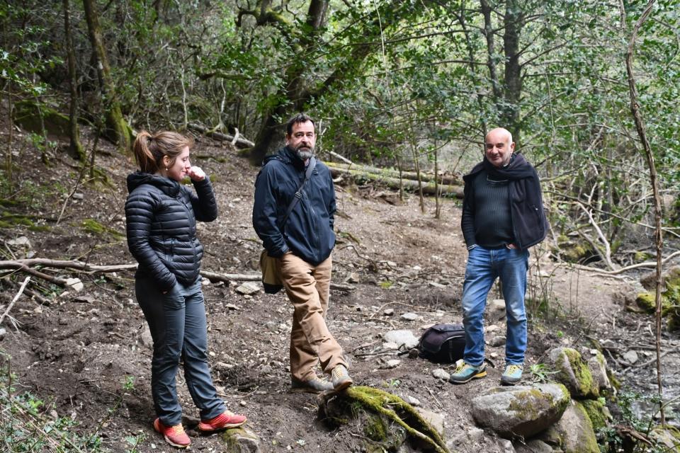 Repérage d'avril 2019 qui a permis de déterminer le site d'étude dans la forêt communale de Serra-di-Scopamène   © MNHN - J. Touroult