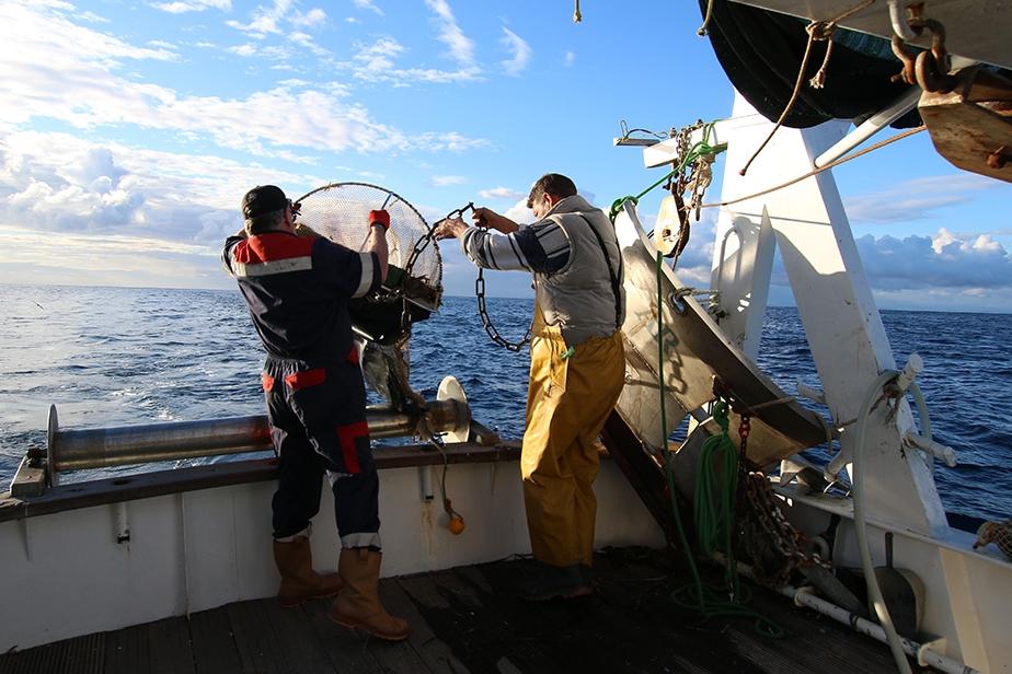 Remontée de la drague, à bord de l'embarcation de pêche le Louis Gaby 2 © Sébastien Soubzmaigne
