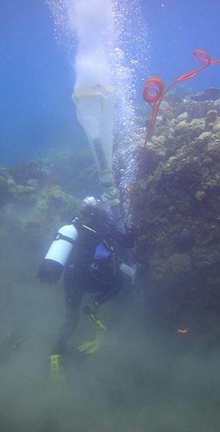 Collecte en plongée avec un aspirateur sous-marin © MNHN - Noémie Michez